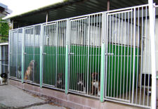 Heated Kennels